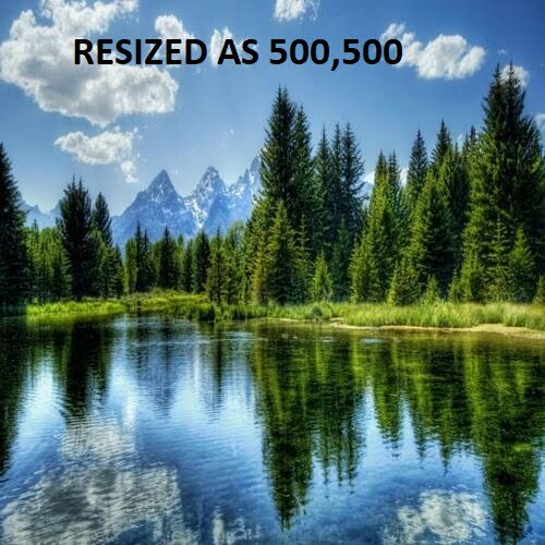 Resized Image Example with Python