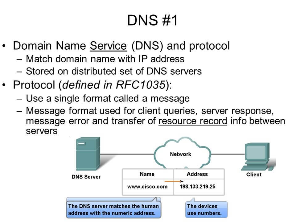 DNS Protocol Example
