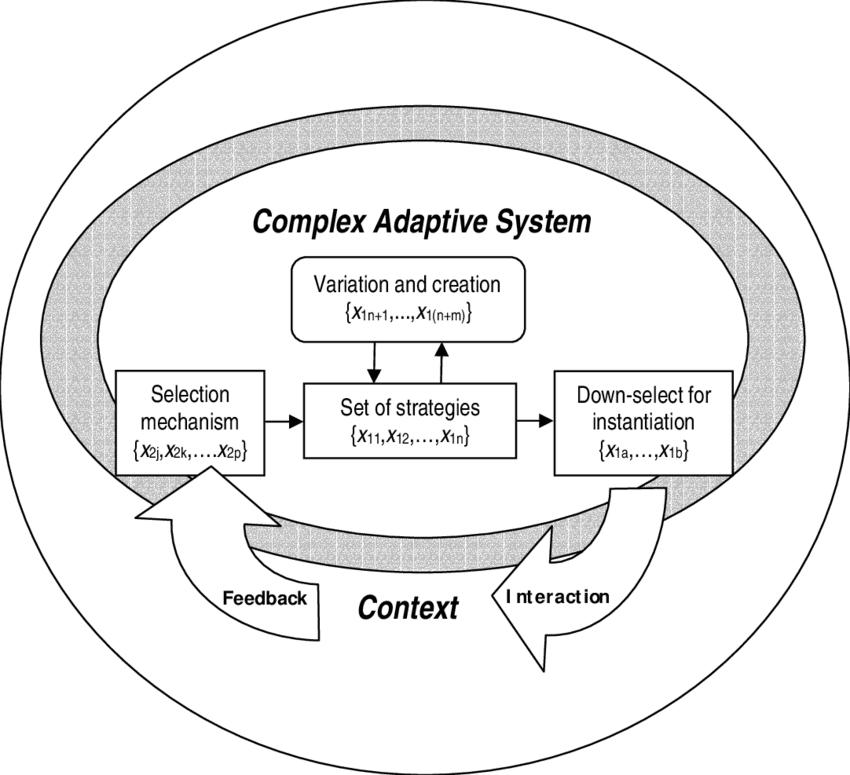 Complex Adaptive System Diagram